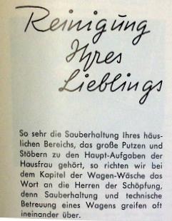 reinigung_goggo
